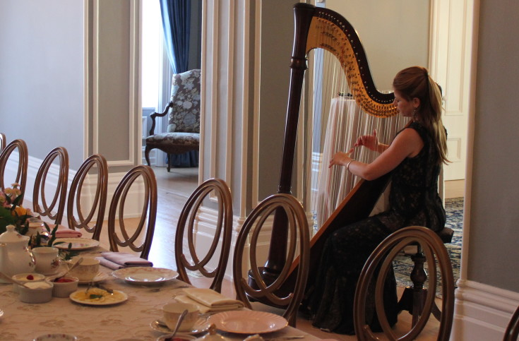 Harpist to entertain your catering menu guests