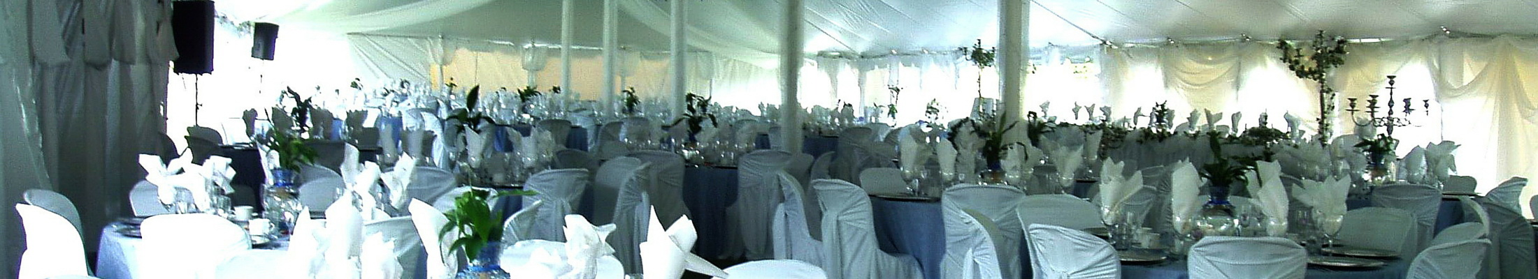 Caledon catering tent wedding reception