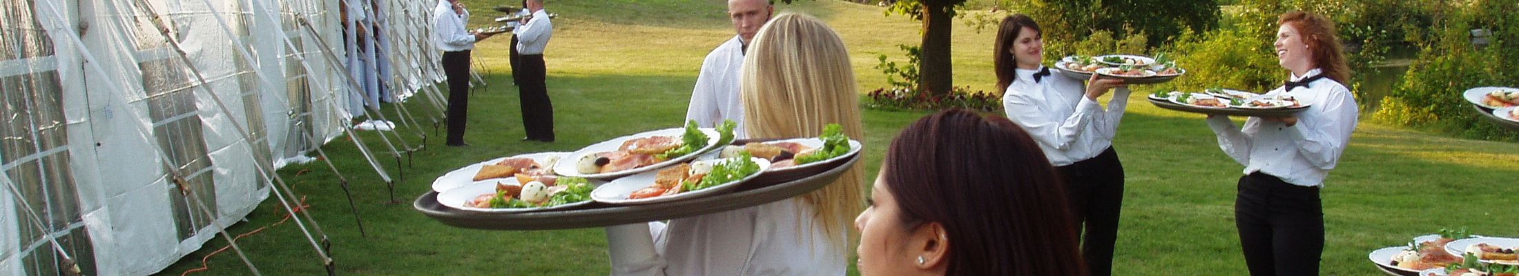 Caledon wedding catering waiters with plated course